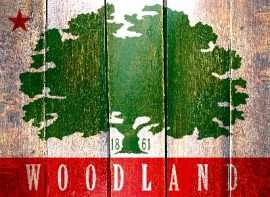 Find a Therapist in Woodland, California