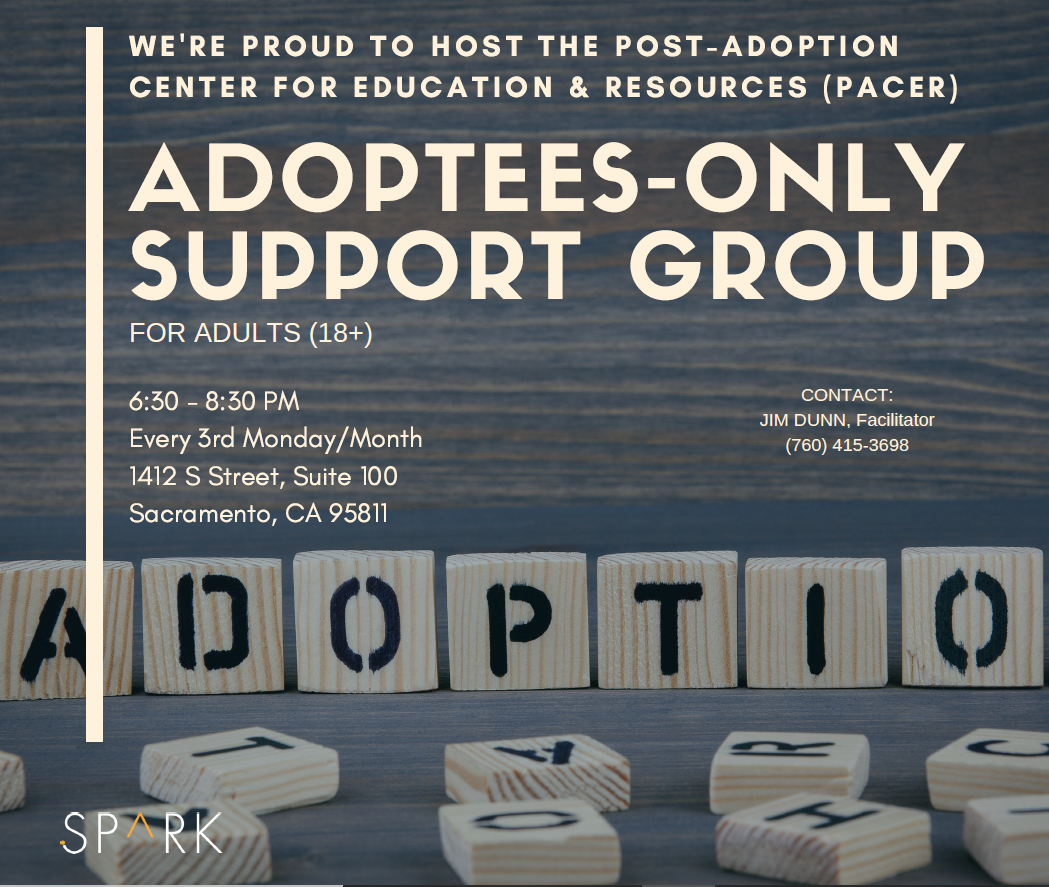 adoptees only therapy support group flyer